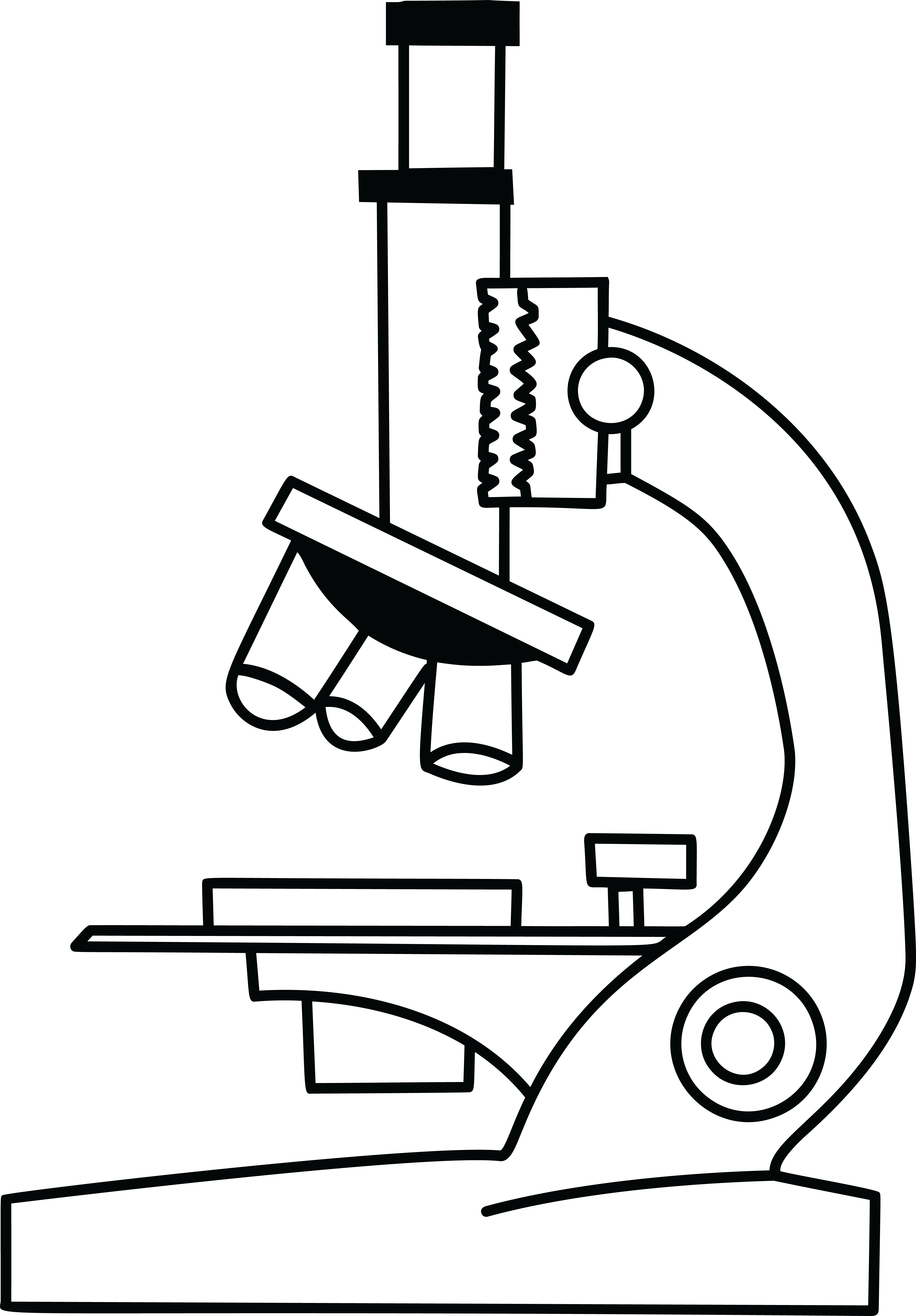 Microscope black and white. Einstein clipart line drawing