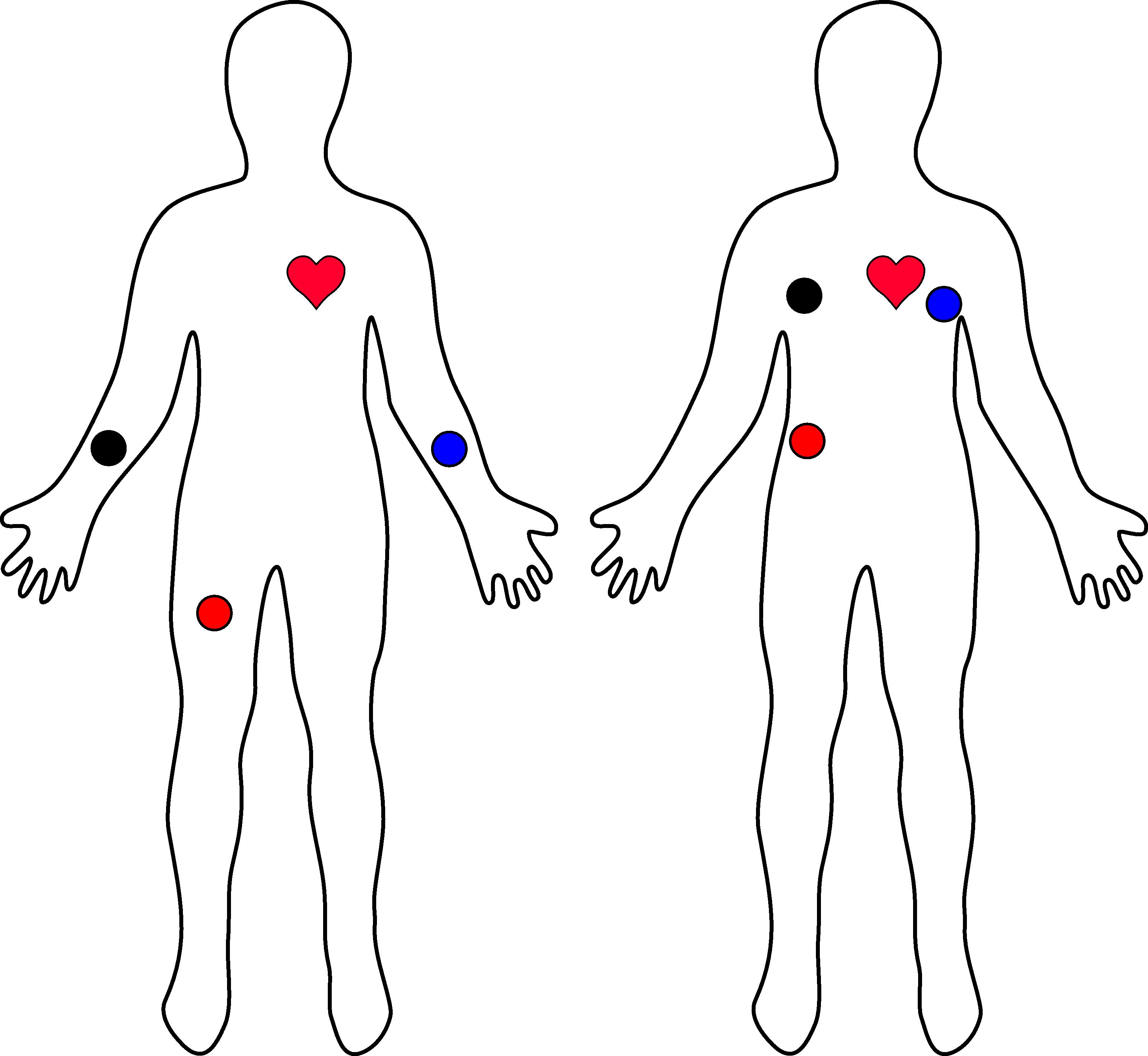 Ad heart rate monitor. Heartbeat clipart ekg strip