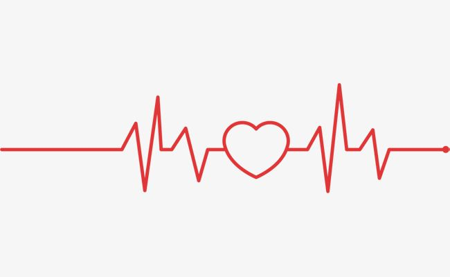 Red vector electrocardiogram . Ekg clipart love line
