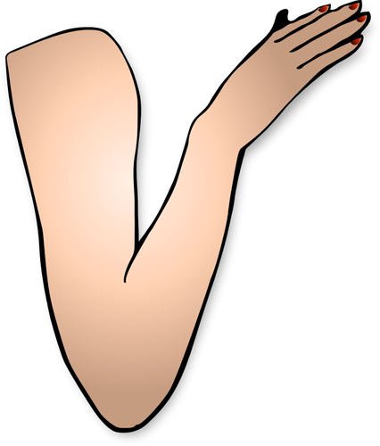 Elbow clipart left arm. Free download best on