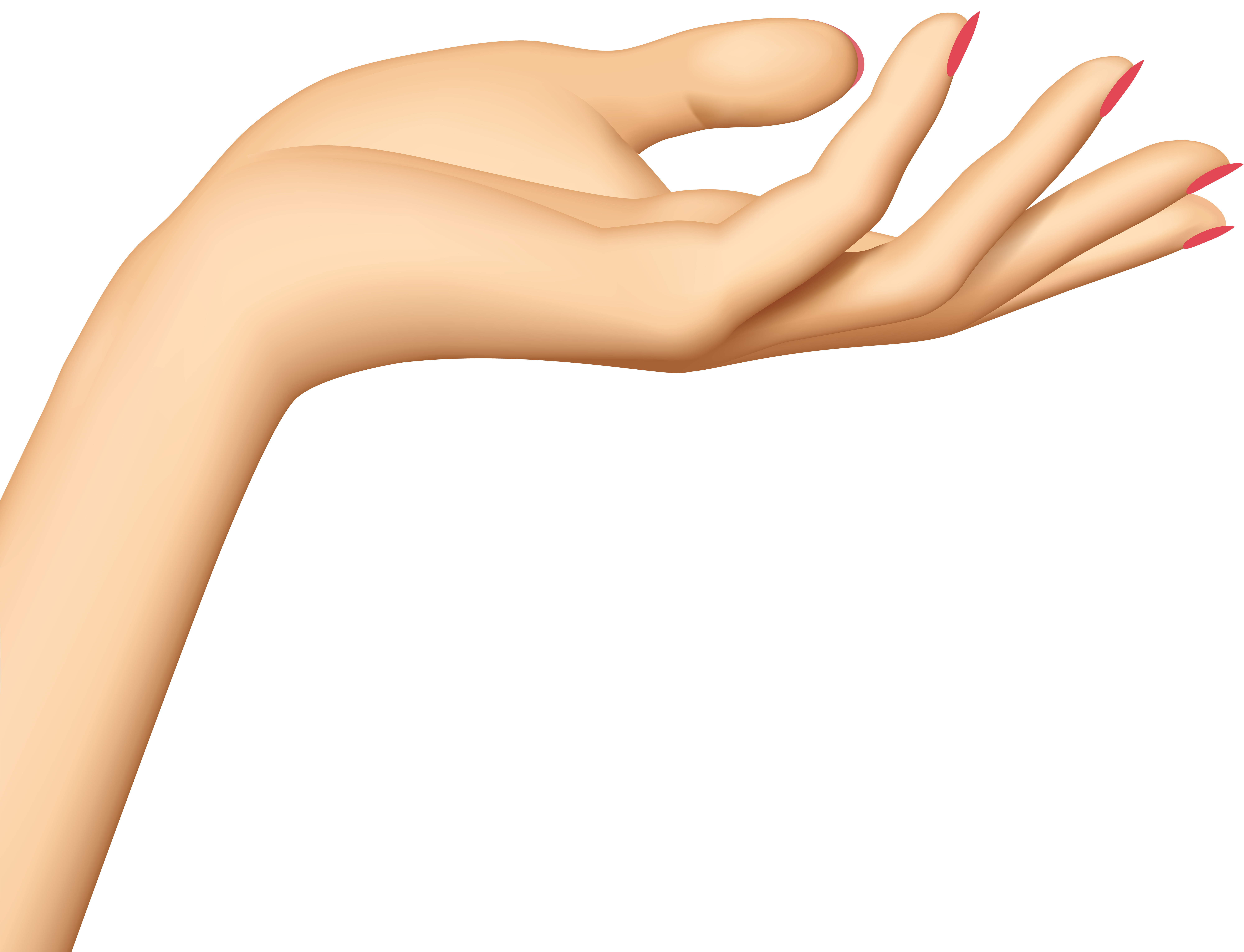 Skin clipart human skin. Hand transparent png clip