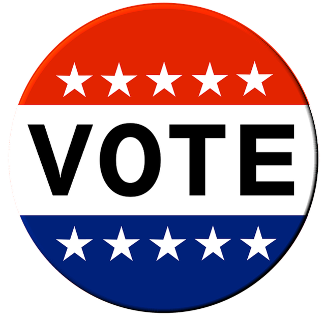 Voting vote button