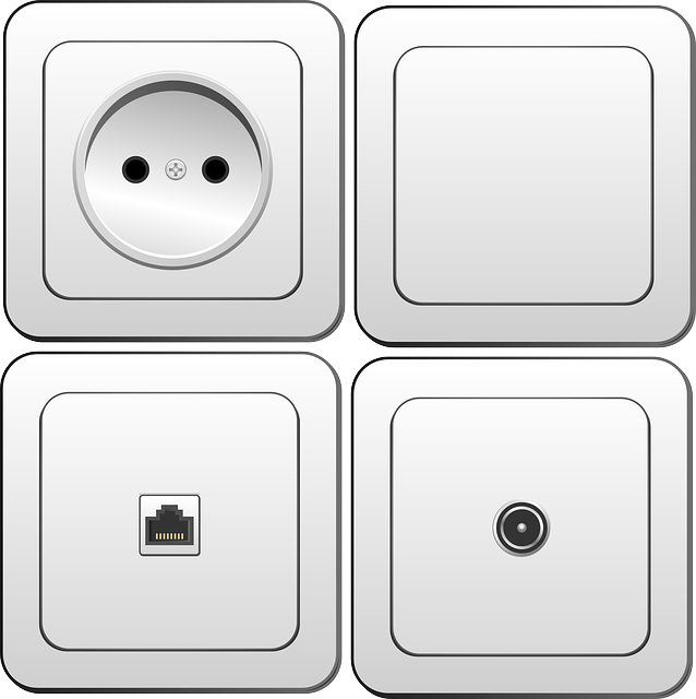 Electrical plug point