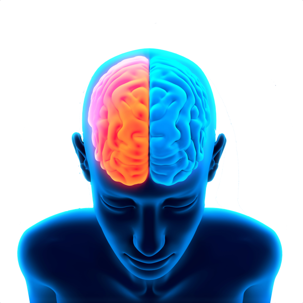Electricity clipart brain. Download free png image