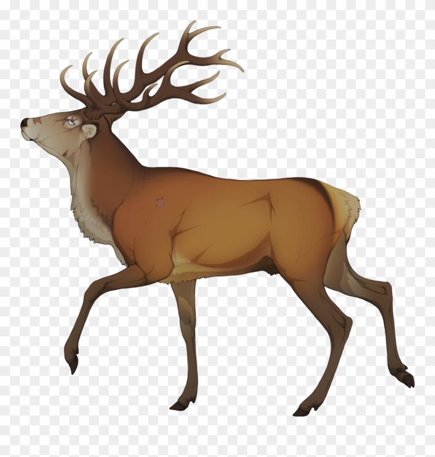 Deer clipart golden deer. Elk png download