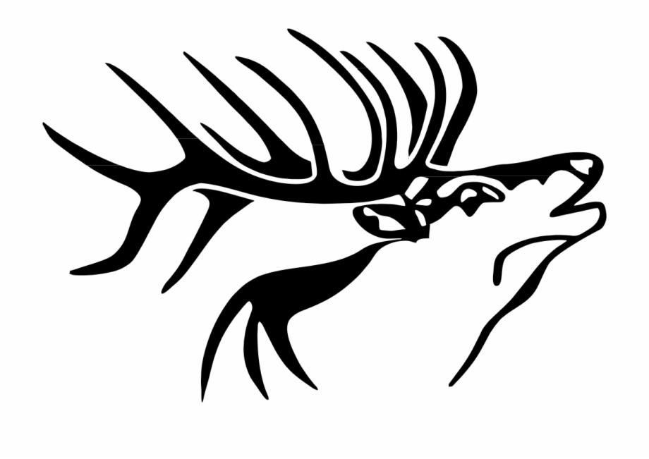 Top free image clip. Elk clipart elk head