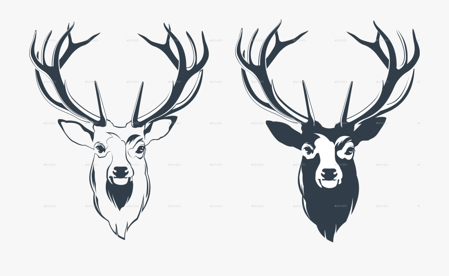 Elk clipart male deer. Red head by sabina