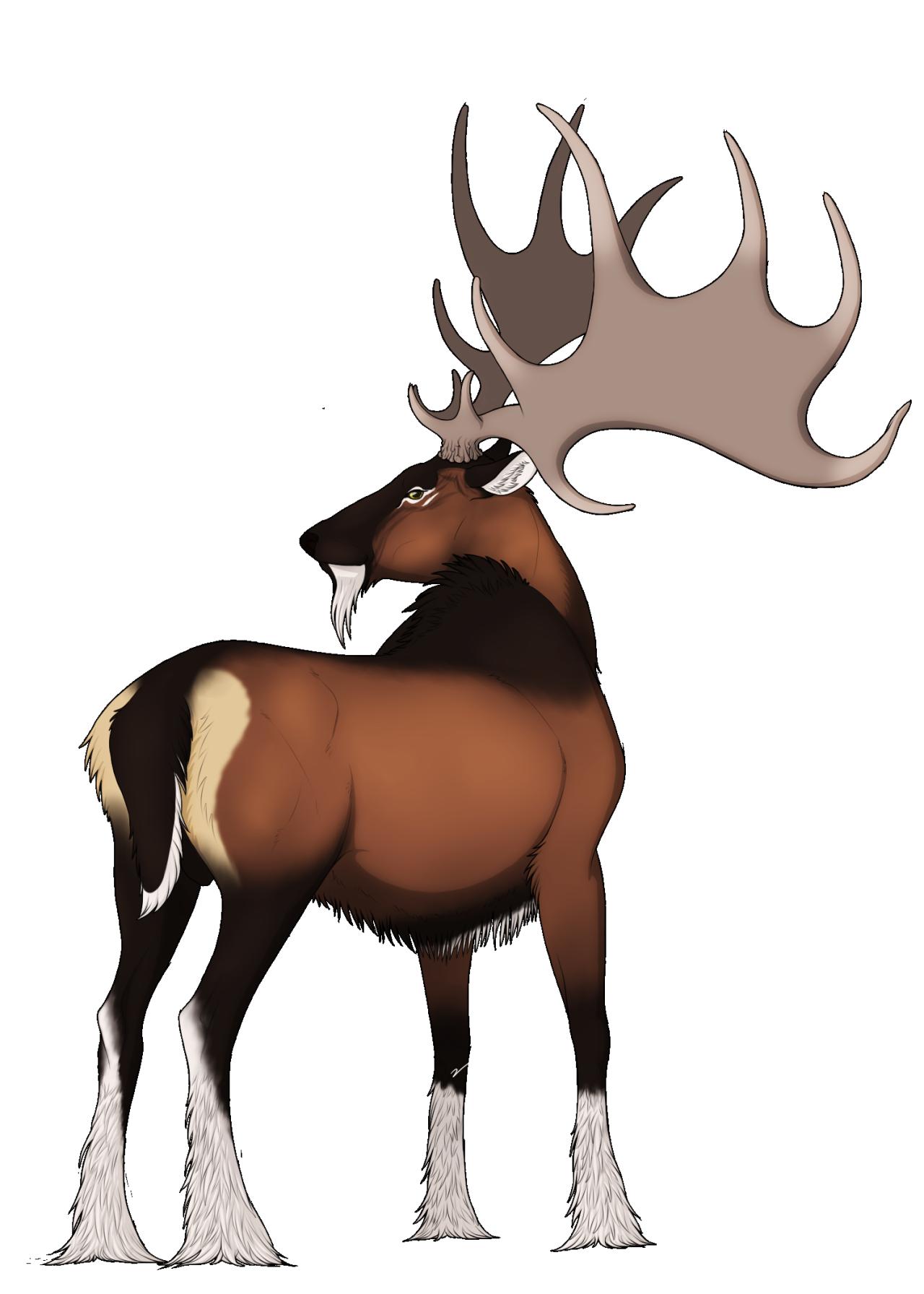 Elk clipart sambar deer. The magus stag elliot