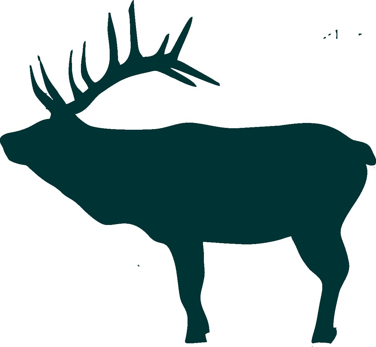 Bear head silhouette at. Elk clipart scene