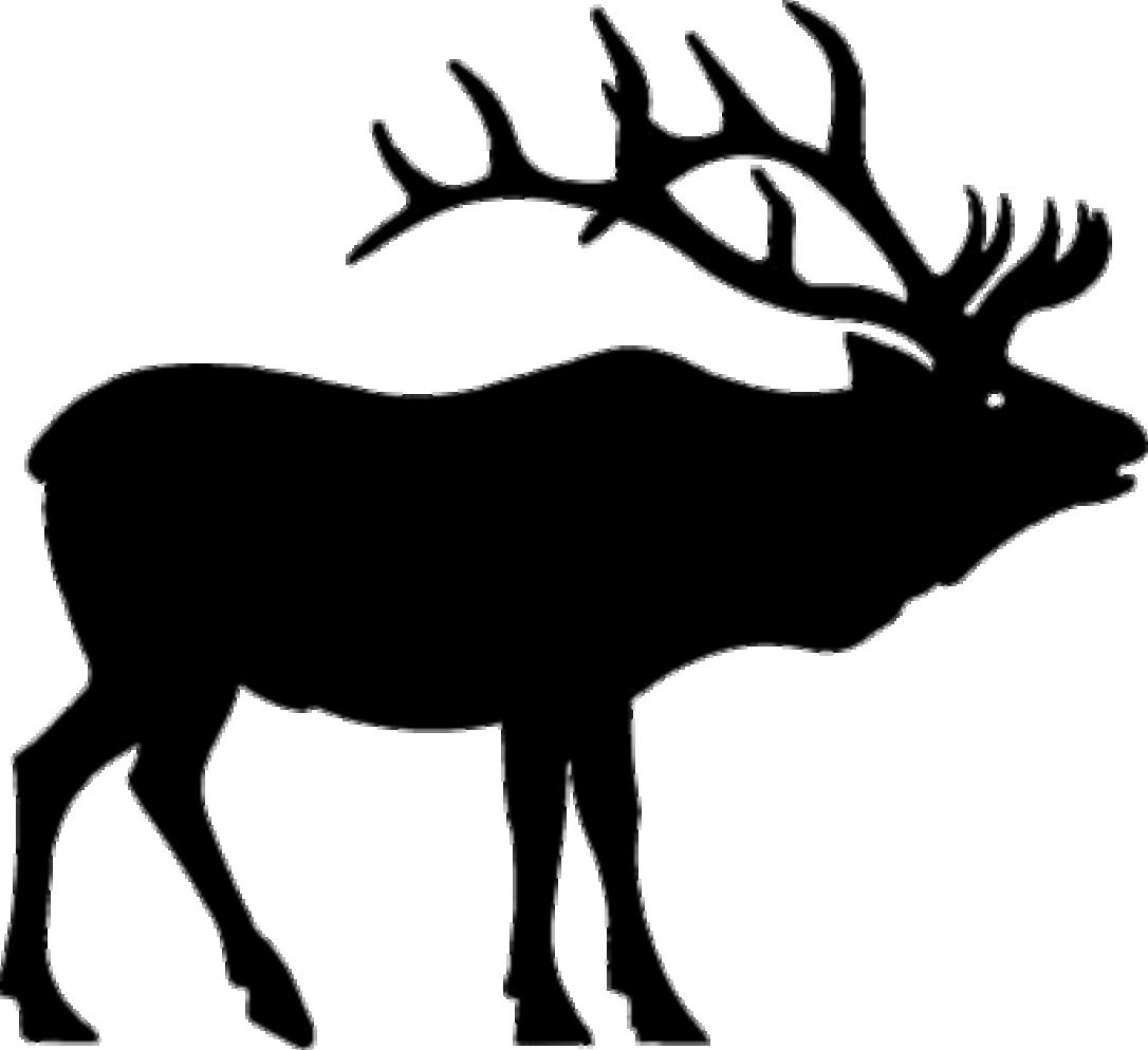 Moose clipart deer. Elk clip art hunting