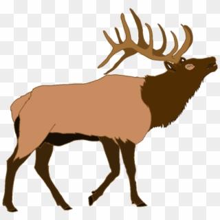 Elk clipart transparent. Png for free download