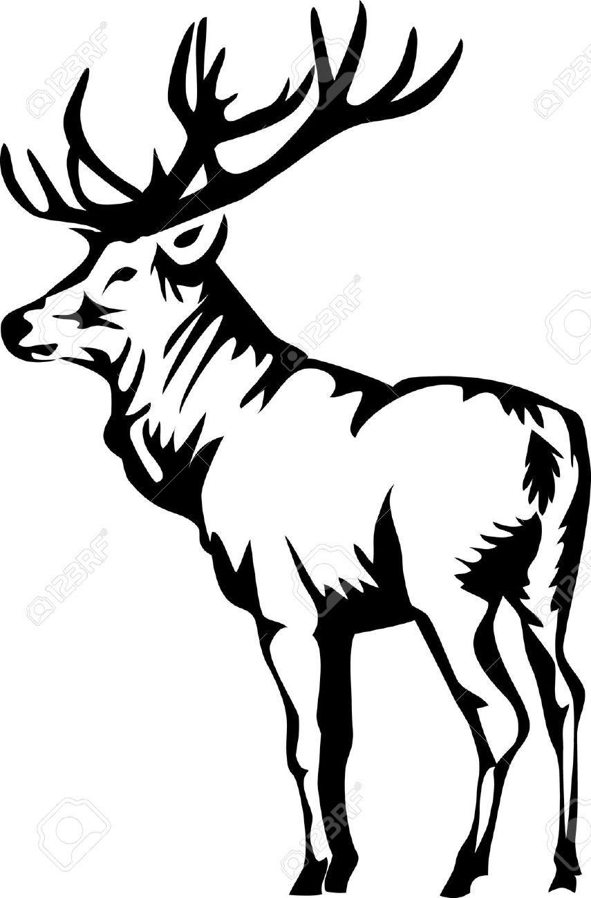 Stock and deer in. Elk clipart vector