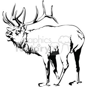 Elk clipart vector. Black and white roaring
