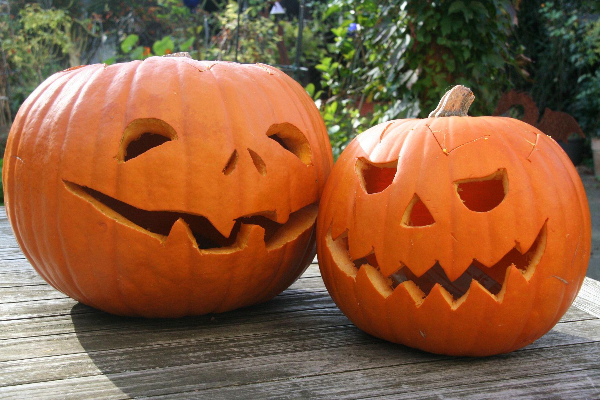 Free patterns . Elvis clipart pumpkin carving