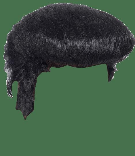 Elvis clipart wig. Transparent png stickpng