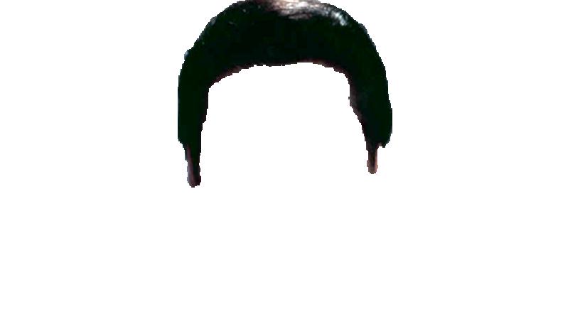 Elvis clipart wig. Hairstyle pompadour elvishair png