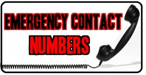 Cliparts contact making the. Emergency clipart emergency information