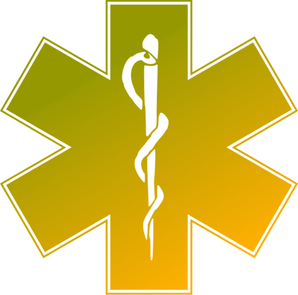 Medicine emergency medical services. Health clipart hospital symbol
