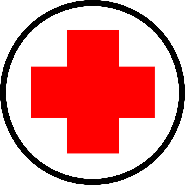 essential items to. Emergency clipart medicine kit