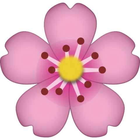 Download cherry blossom icon. Emoji flower png