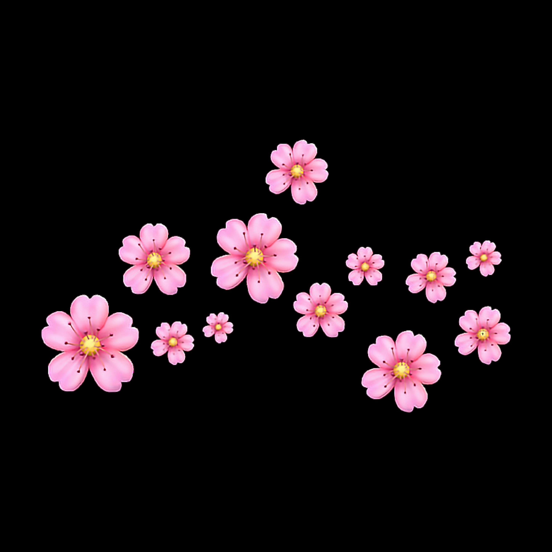 Emoji flower png. Craft picsart photo studio