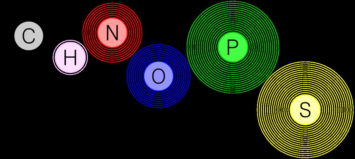 Chon wikipedia . Energy clipart chemistry atom