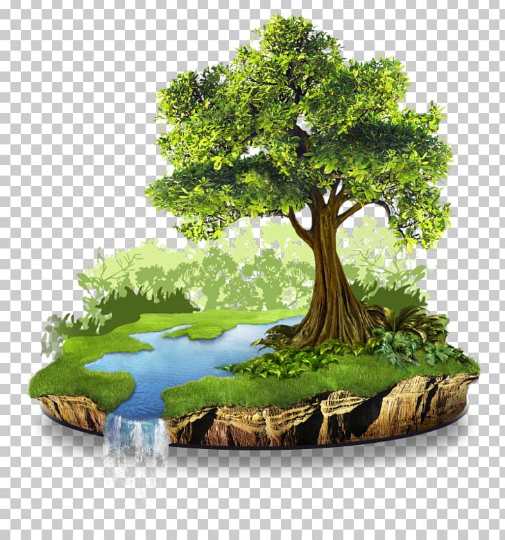 Natural resource png . Environment clipart nature conservation