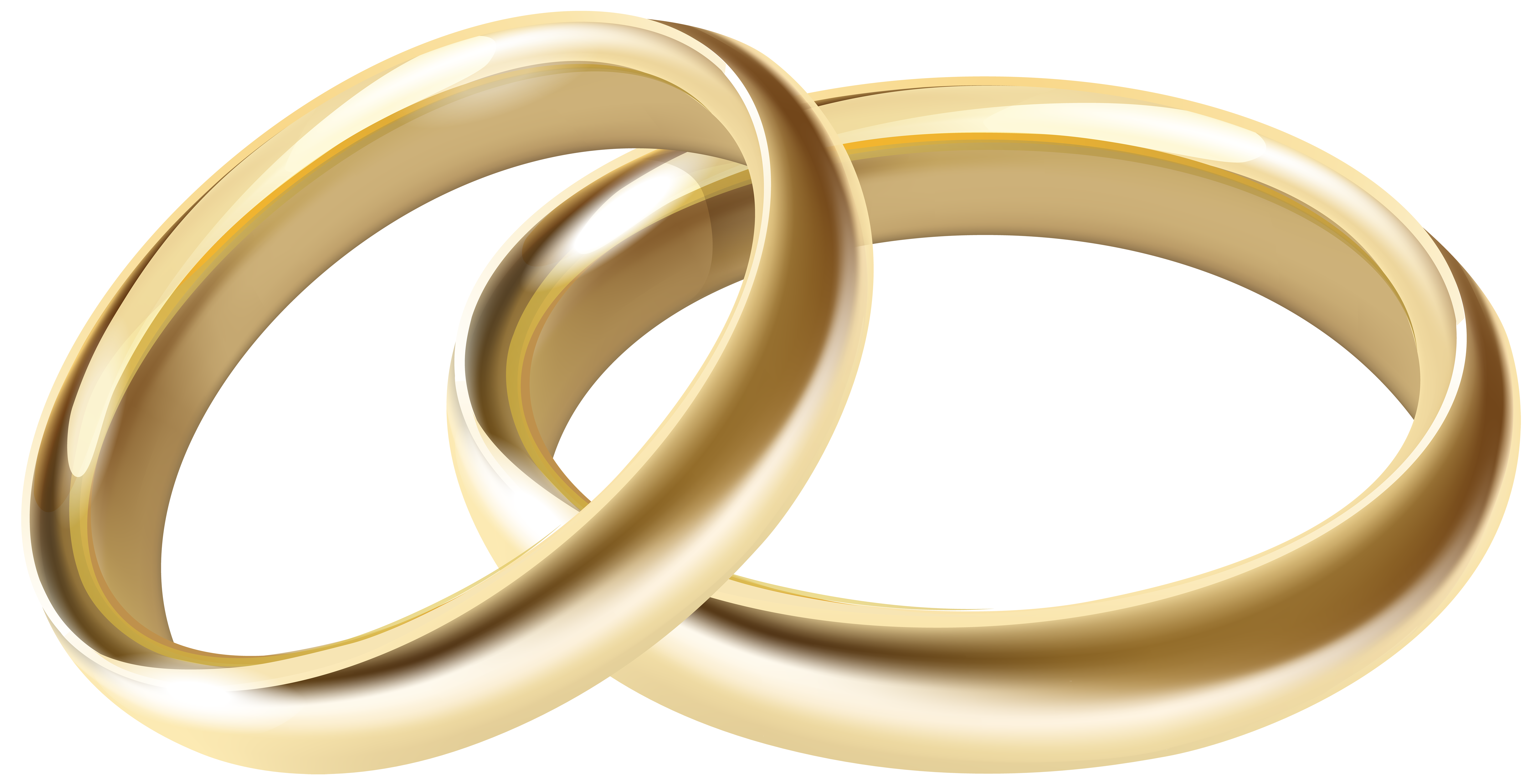 Magnificent rings png elaboration. Jewelry clipart wedding ring