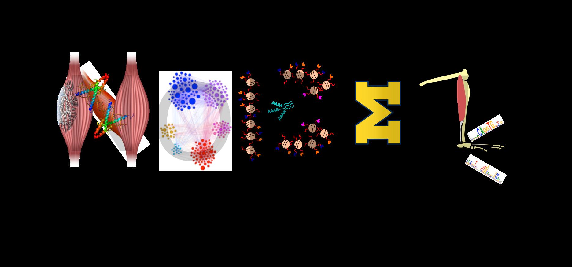 Website clipart welcome home sign. Nano omic bio engineering