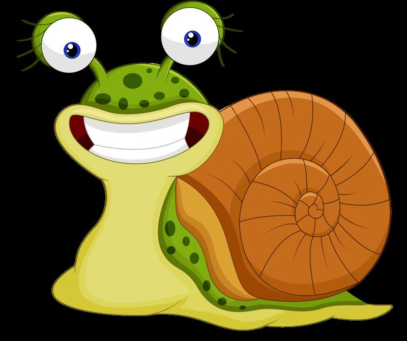 Garden clipart cartoon. Content png pinterest snail