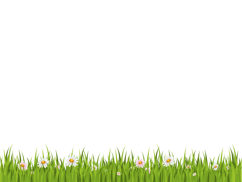 Grass transparent background f. Flower field png