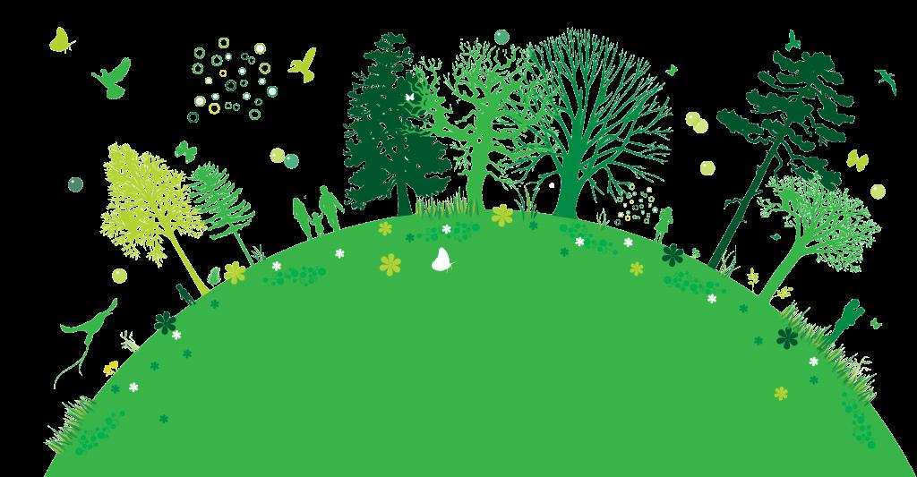 Environment clipart ecosystem. La ecologia estudia los