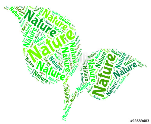 Environment clipart environment word. Nature means environmental and