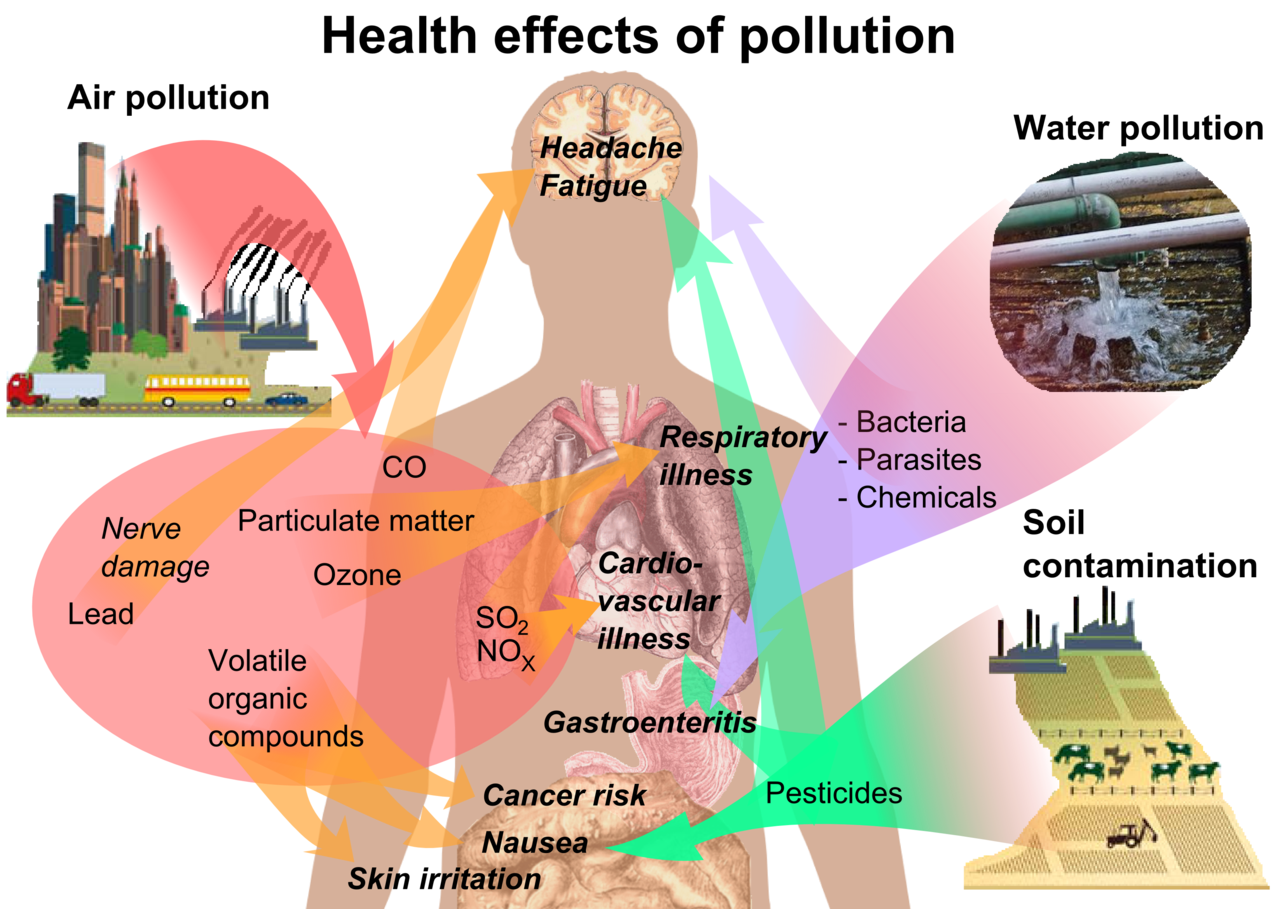 Collection of free contamination. Healthy clipart public health