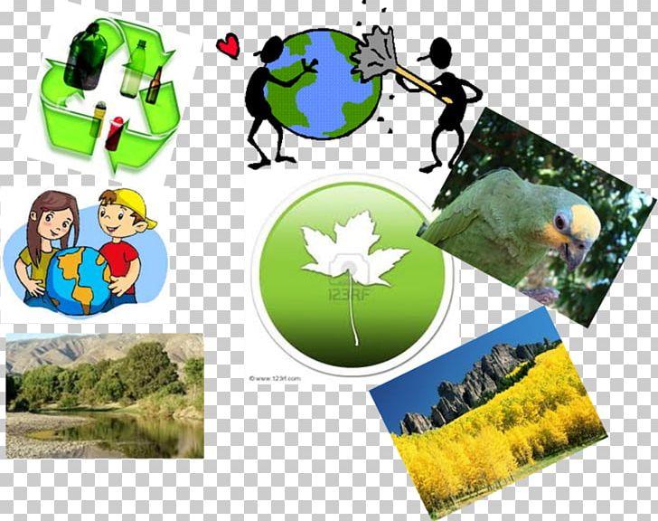 Movement natural . Environment clipart nature conservation