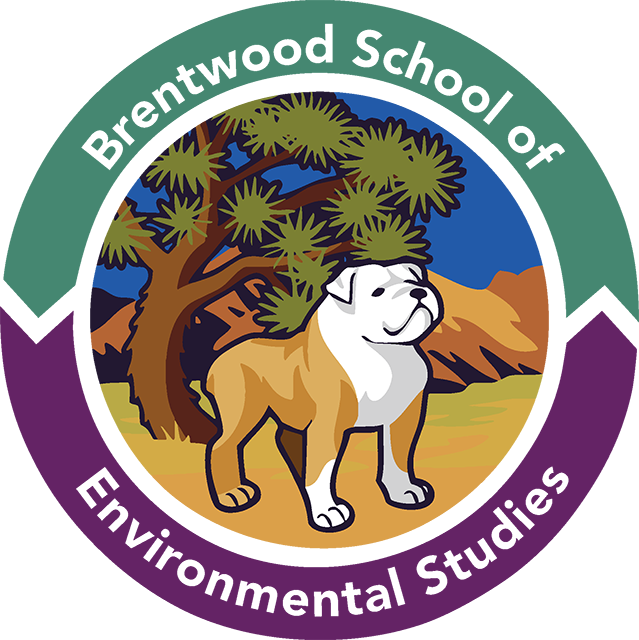 Home brentwood of environmental. Environment clipart school environment