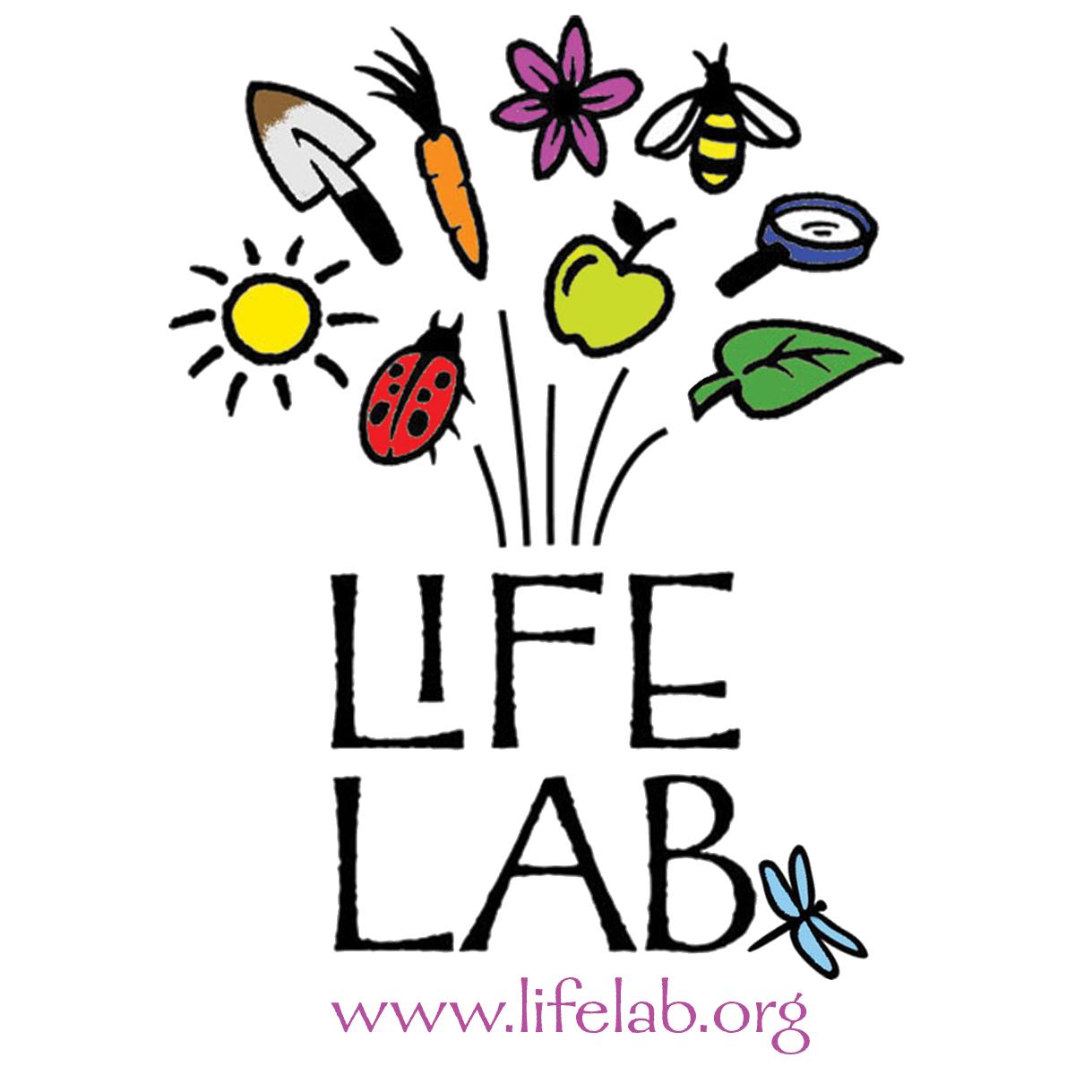 Environment clipart school garden. Life lab foundation gardens