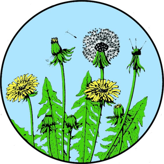 Environment clipart sustainable living. Center for environmental and