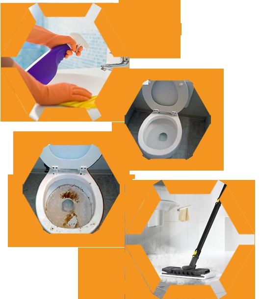 Zealous hygiene solutions kitchen. Environment clipart unhygienic