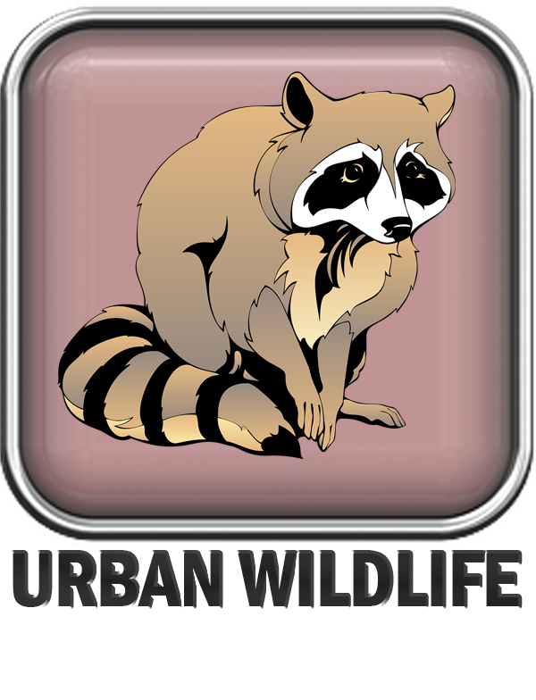 Environmental resources city of. Environment clipart urban planning