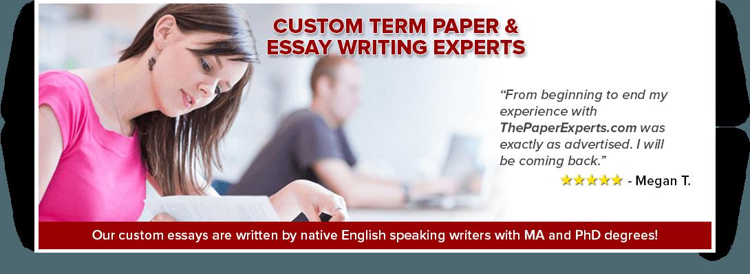 essay term paper college paper format term paper outline