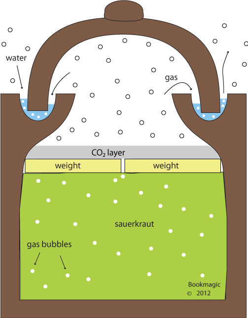 Fermenting clay crocks sauerkraut. Evaporation clipart cooking vessel