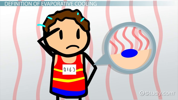 What is evaporative cooling. Evaporation clipart daily life