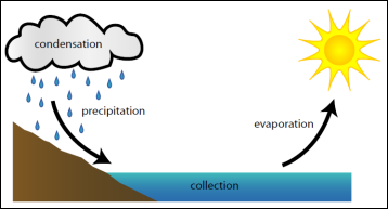 Evaporation clipart daily life. The water cycle by