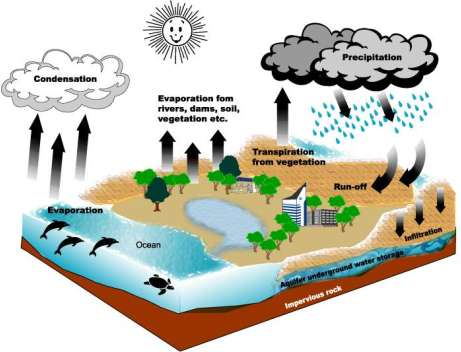 Evaporation clipart ocean lake stream. The water cycle
