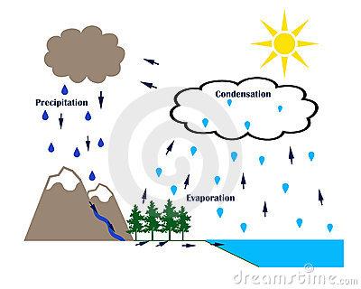 Evaporation clipart rain. Shaun m