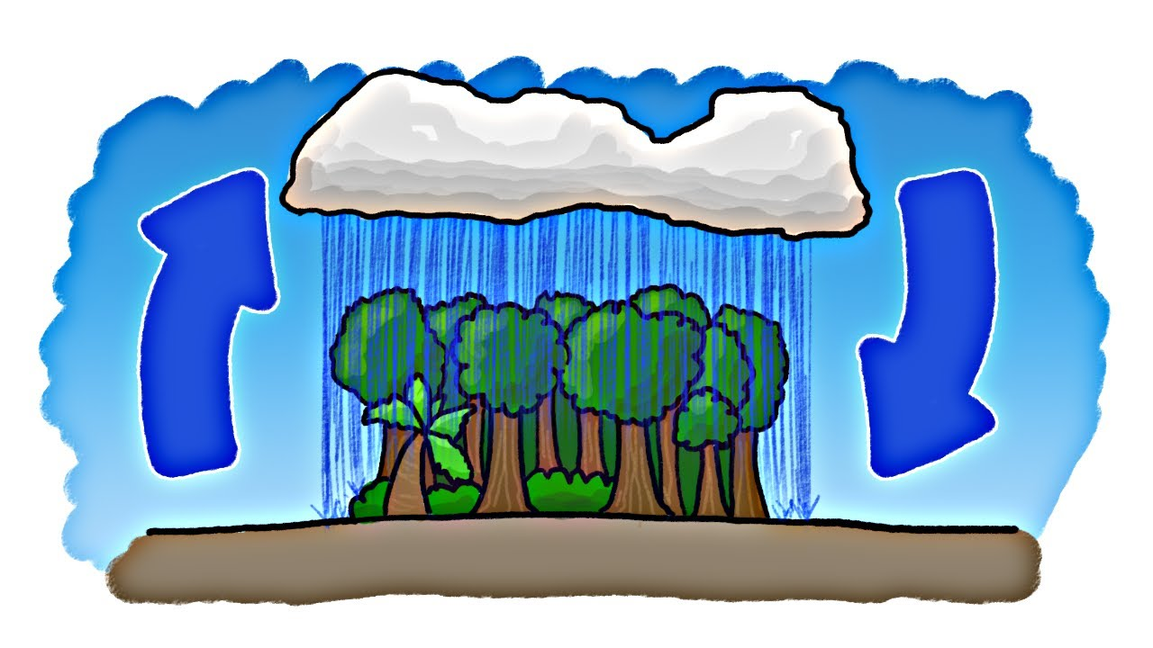 Which came first the. Evaporation clipart rain