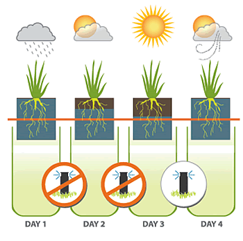 Evaporation clipart soil. Just what is evapotranspiration