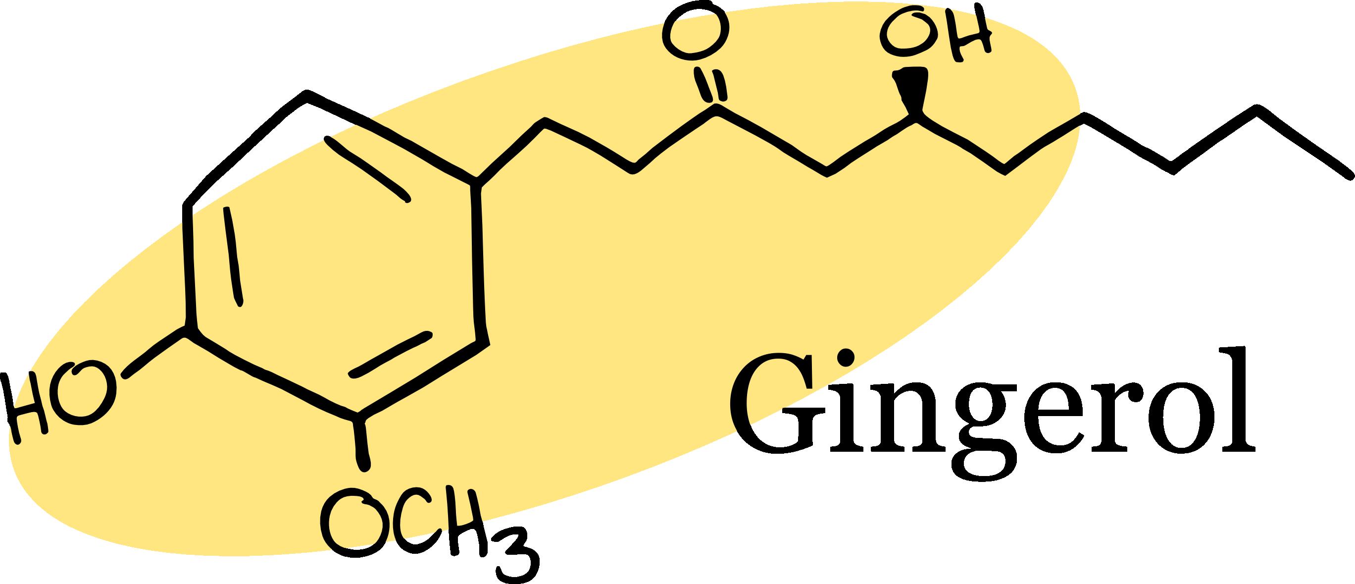 Rhizome archives science food. Evaporation clipart sublimation