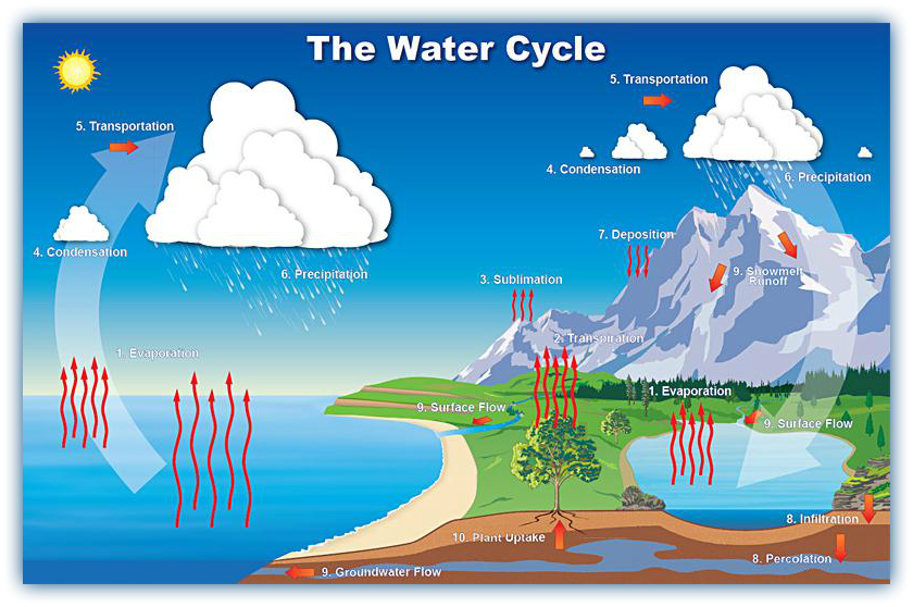 Evaporation clipart sublimation. Water cycle